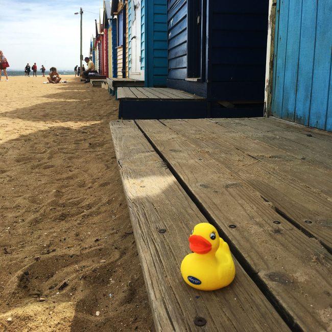 Bath-Duckie-Fully-Sealed-7